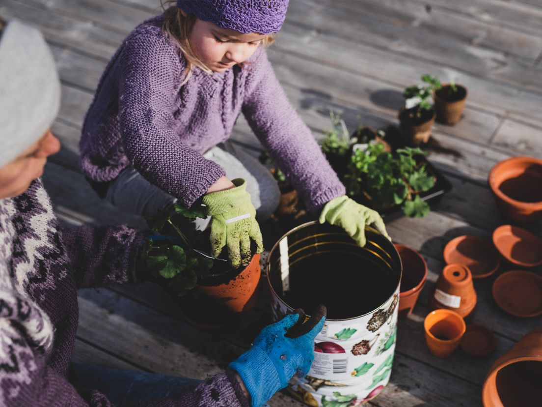 Ett barn planterar blommor i krukor