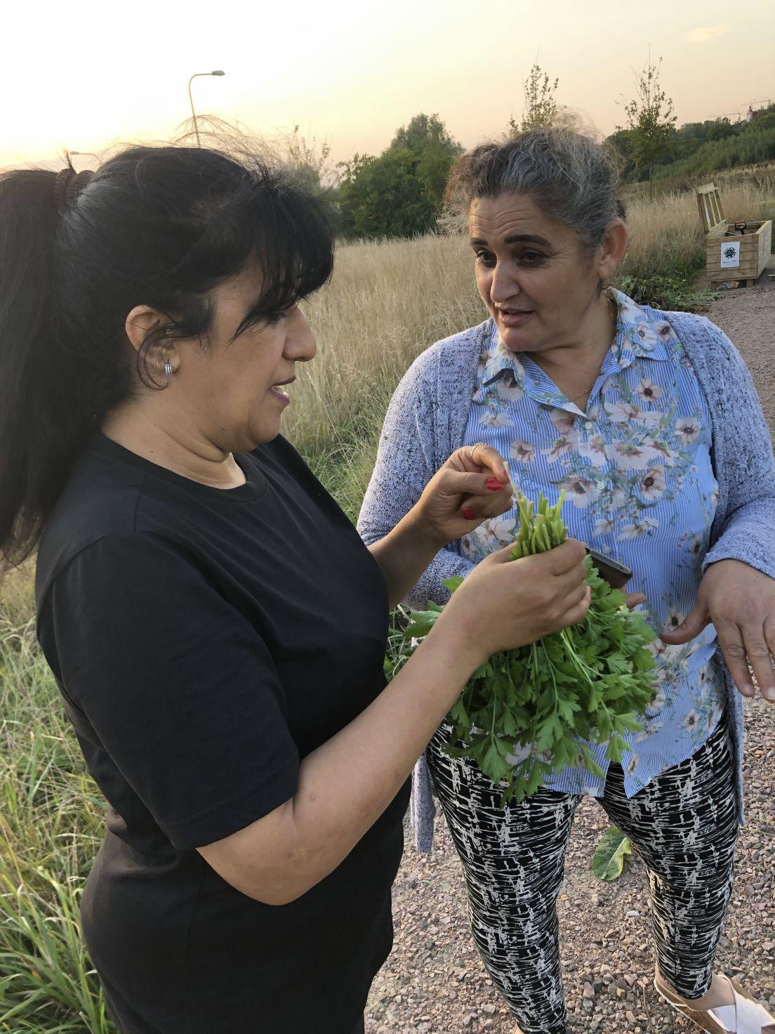 Två damer odlar i kvarteret ängsladan i lund