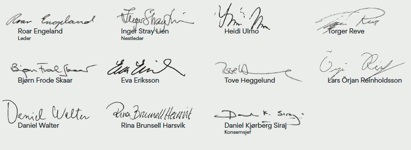 Signaturer fra alle i styret 2019