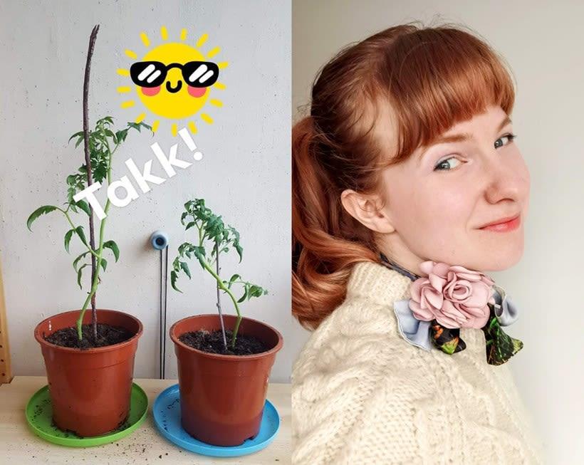 Bilde av tomatplanter og Eva Kittelsen. Foto: Eva Kittelsen