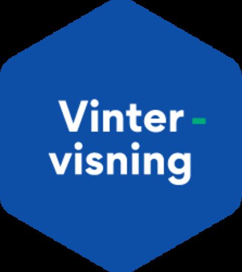 Illustrasjon av ikon for vintervisning i OBOS.