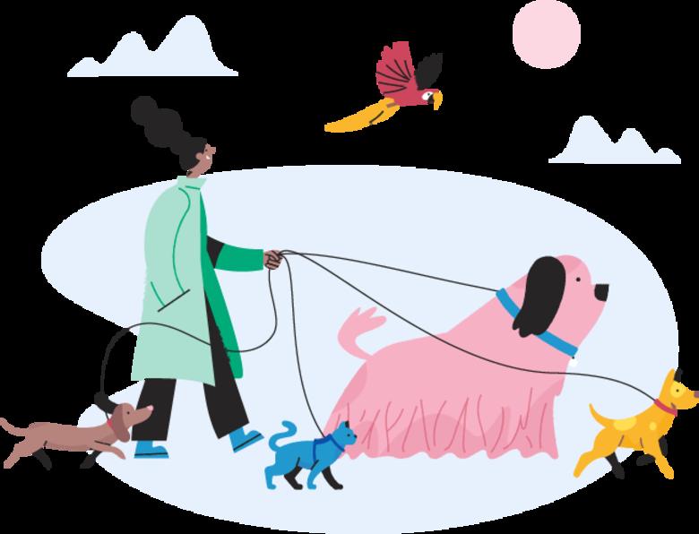 Illustrasjon av en person som lufter flere hunder og en katt.