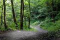 Svartdalsparken er kun noen få minutters gange unna og byr på fredelige omgivelser langs Alnaelva.