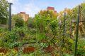 Borettslaget har anlagt parsellhage - her er det fine muligheter for å dyrke egne grønnsaker