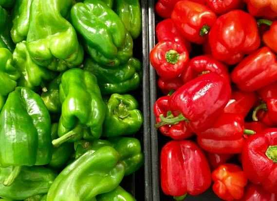 can rabbits eat bell pepper