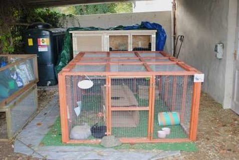 how to build a rabbit hutch for outside1