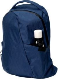 Front facing view of the Able Carry Thirteen Daybag