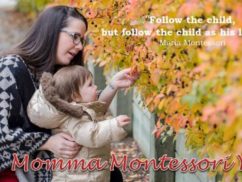 Montessori At Home: Your Child From 3 to 6 Years