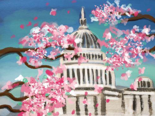 Virtual ArtJamz®: Capitol Hill in Bloom