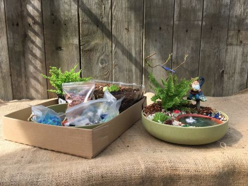 Little Gnome Pond Garden DIY Kit $39.99