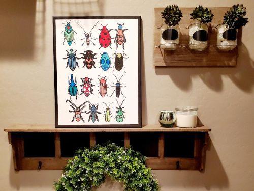 Creativity Kit - Bug Collection - TO GO