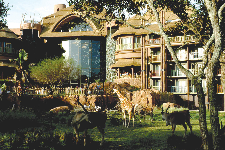 Disney S Animal Kingdom Lodge Ocean Florida