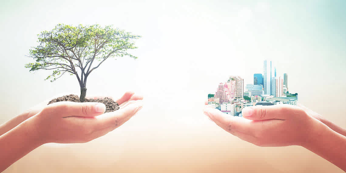 graphic of two sets of hands, one holding a tree and the other a city