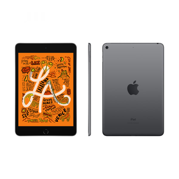 iPad mini (5th gen) Wi-Fi 64GB - Space Grey 2