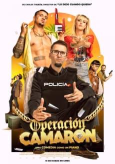 OPERACION CAMARON