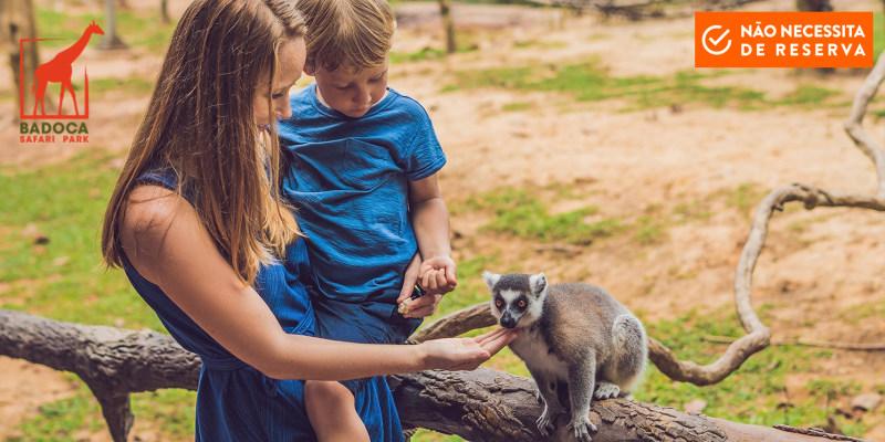 Badoca Safari Park | Entrada de Adulto + Interacção com Lémures + Rafting Africano