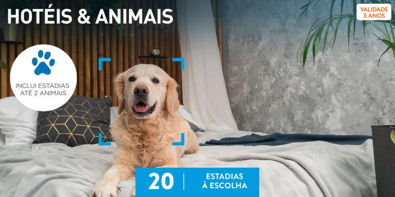 Hotéis & Animais | 20 Estadias à Escolha