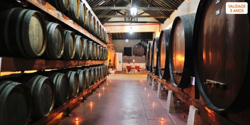 Visita à Adega com Prova de Vinhos e Produtos Regionais | Adega Venâncio da Costa Lima - Palmela