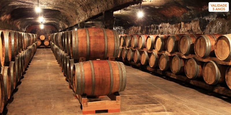 Visita à Propriedade + Prova de 3 Vinhos para Dois | Caves Primavera - Bairrada