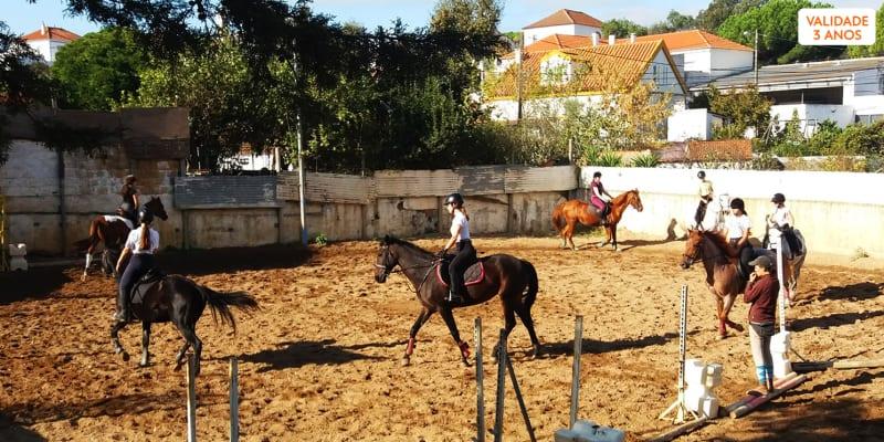 Baptismo a Cavalo em Picadeiro - 30 Min   1 ou 2 Pessoas   Clube Equestre Catarina Vicente - Almada