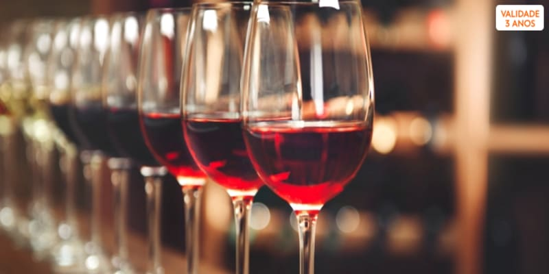 Curso de Vinhos - Aprender a Prová-los Sem Dúvidas | Porto