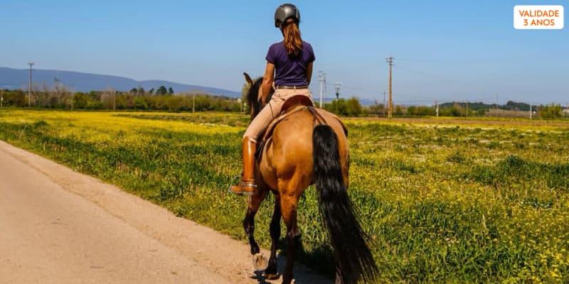 Passeio a Cavalo na Golegã | 1 Hora na Natureza para 1 ou 2 Pessoas