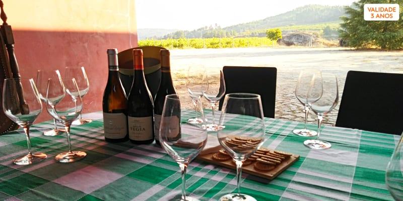Passeio pela Quinta + Visita Técnica à Adega + Prova de 2 Vinhos para Dois   Quinta da Vegia - Viseu