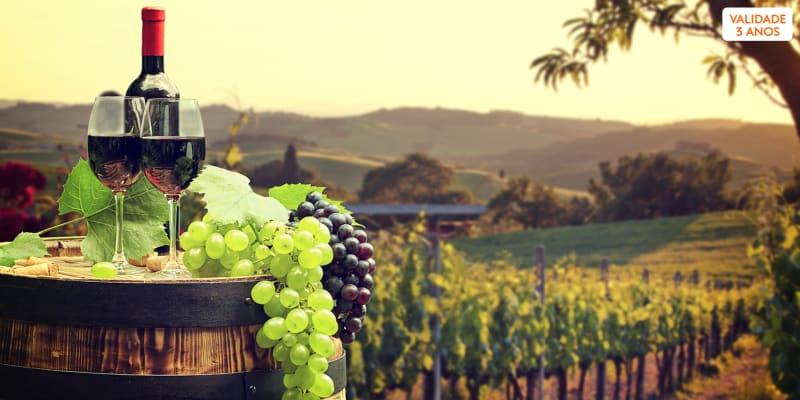 Visita à Adega + Prova de Vinhos com Degustação de Produtos Regionais - 1 ou 2 Pessoas | Lisboa