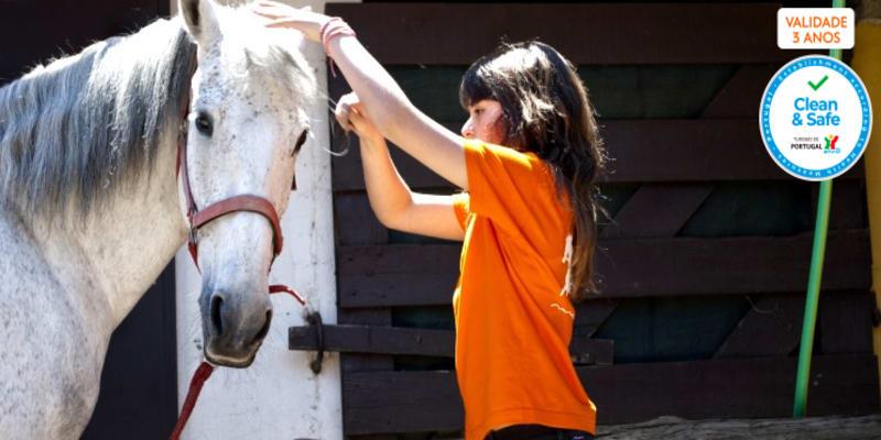 Baptismo a Cavalo + Visita à Quinta + Piquenique para Dois   2h30   Aveiro