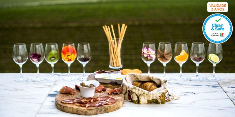 Visita à Adega Mayor com Prova de Vinhos ou Workshop Vínico   1 ou 2 Pessoas   Campo Maior