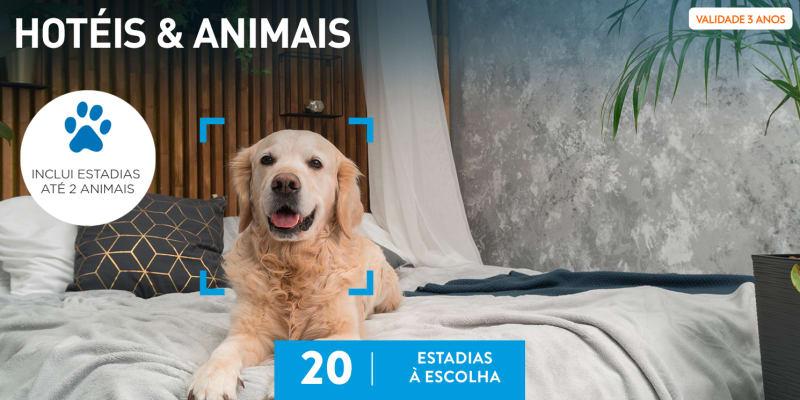 Hotéis & Animais   20 Estadias à Escolha