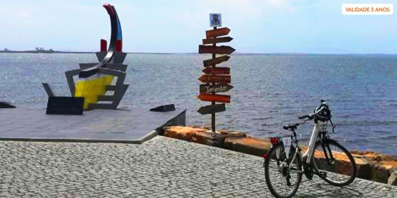 Tour de Bicicleta pela Ria de Aveiro ou Igrejas de Ovar - 1 ou 2 Pessoas | BeCycle