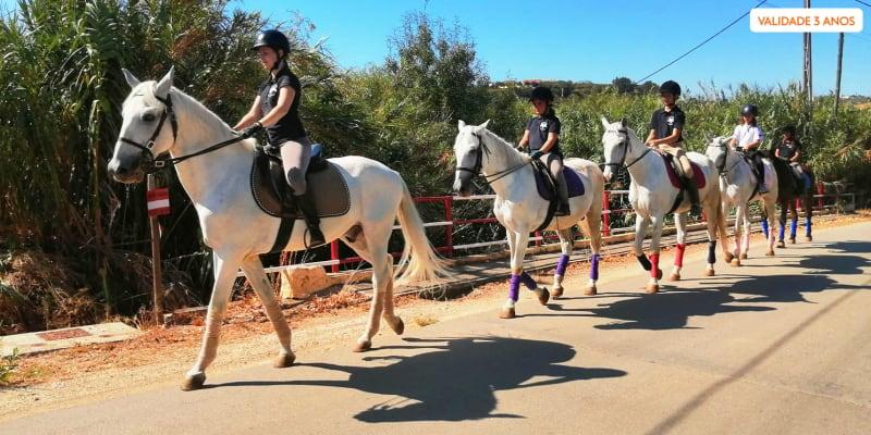 Experiência Equestre - Baptismo ou Passeio a Cavalo   1 ou 2 Pessoas   Vila Franca de Xira