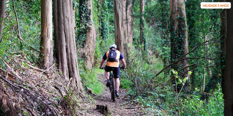 Passeio Guiado em Bicicleta Eléctrica pela Serra de Sintra para Dois - 4h   E-Bike Portugal