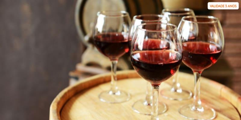 Ervideira Apaixonante! Prova de Vinhos + Visita à Adega c/ Degustação para Dois | Monsaraz