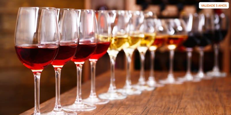 Prova de Vinhos Ervideira c/ Degustação Regional e Prova Cega   Lisboa