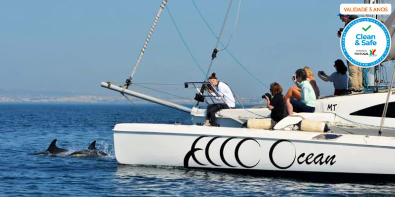 Expedição em Veleiro Trimarã Rumo aos Golfinhos! 2 Pessoas   4h   Lisboa