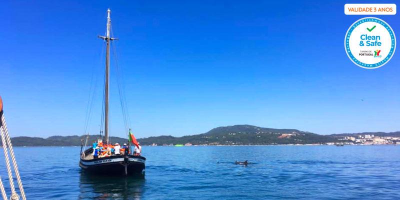 Cruzeiro no Sado pela Rota dos Golfinhos c/ Actividades a Bordo - Até 3h   Bilhete Criança e Adulto
