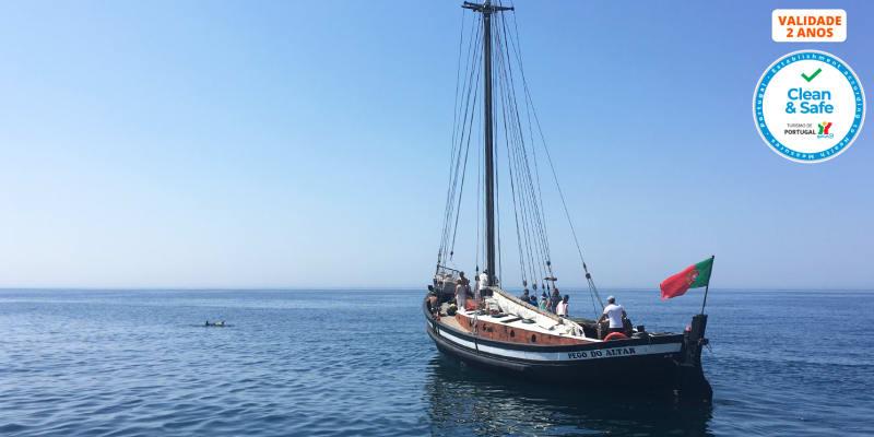 Cruzeiro no Sado | Rota dos Golfinhos - Passeio no Estuário para Crianças e Adultos | Até 3 Horas