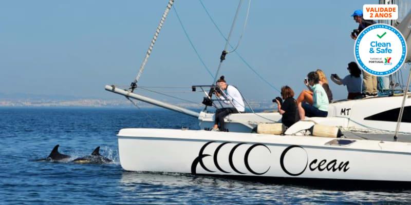 Expedição em Veleiro Trimarã Rumo aos Golfinhos! 2 Pessoas | 4h | Lisboa