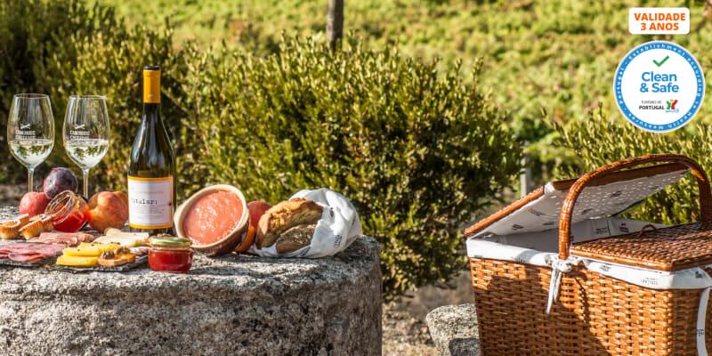 Visita à Adega + Prova de Vinhos com Opção de Degustação de Petiscos Regionais  | Viseu