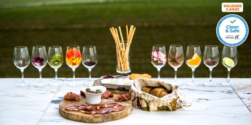 Visita à Adega Mayor com Prova de Vinhos ou Workshop Vínico | 1 ou 2 Pessoas | Campo Maior