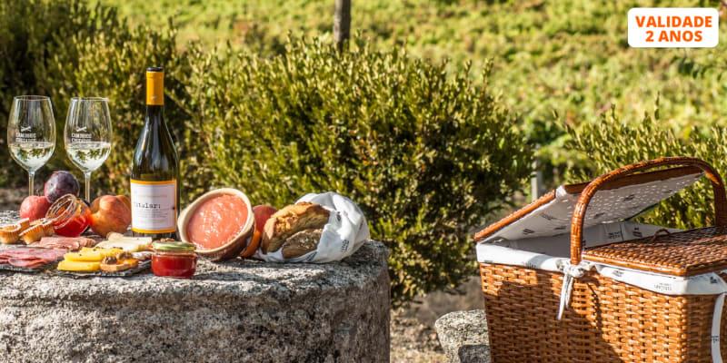 Visita à Adega + Prova de Vinhos com Opção de Degustação de Petiscos Regionais    Viseu