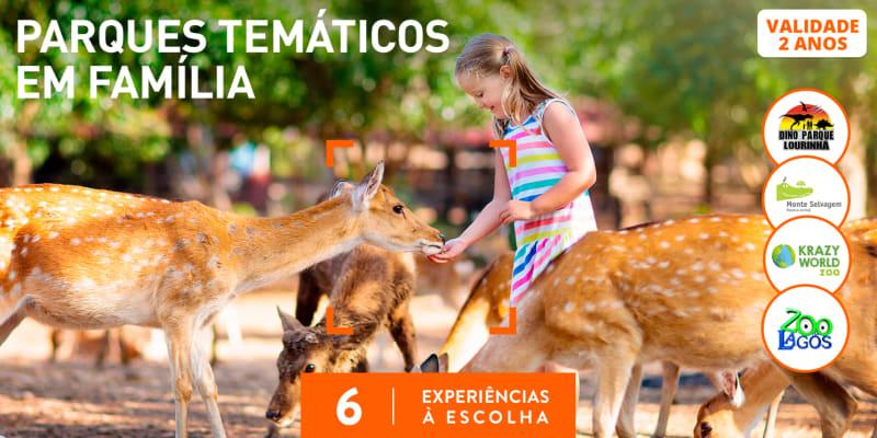 Parques Temáticos em Família | 6 Actividades à Escolha