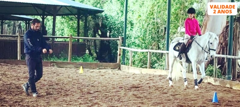 Aula de Equitação na Escola LMG Equestre - Campo Grande   Nível Iniciado ou Avançado