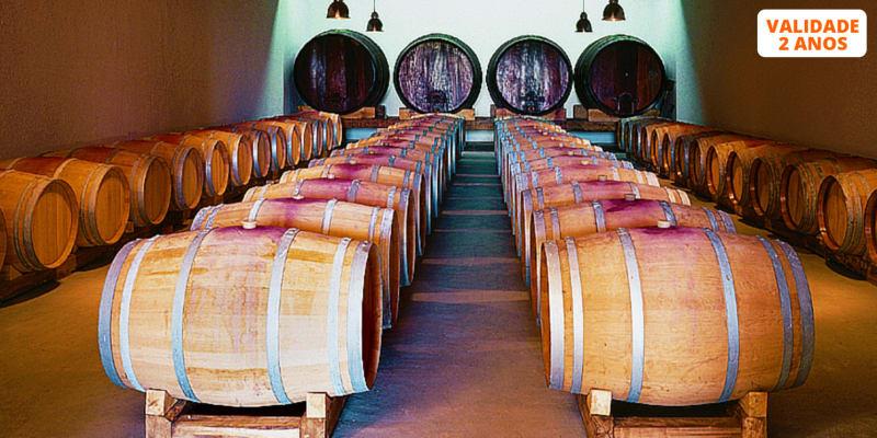 Visita à Adega e Vinhas c/ Prova de Vinhos e Petiscos para Dois |  Alenquer