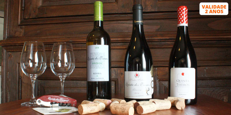 Visita à Adega & Prova de Vinhos | 1 ou 2 Pessoas | Quinta dos Termos  - Belmonte
