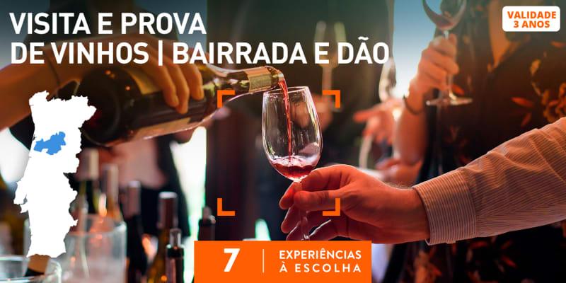 Visita e Prova de Vinhos | Bairrada e Dão | 7 Experiências à Escolha
