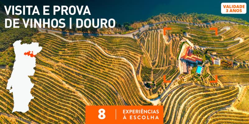 Visita e Prova de Vinhos | Douro | 8 Experiências à Escolha