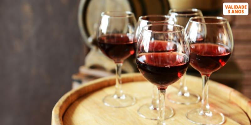Ervideira Apaixonante! Prova de Vinhos + Visita à Adega c/ Degustação para Dois   Monsaraz